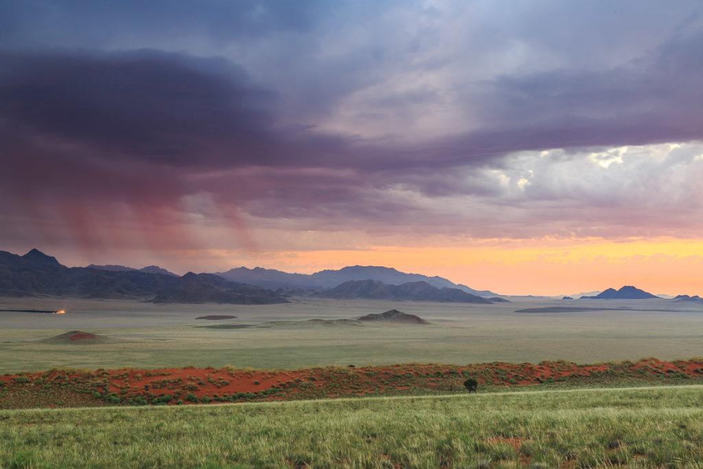 Desert Hamadas And Steppes